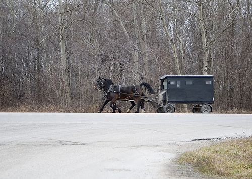 buggy with horses