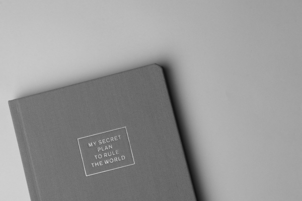 A photo of a book with a plain cover that says its title and nothing else. The title is MY SECRET PLAN TO RULE THE WORLD.